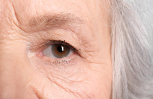 Vision Loss in Seniors Image