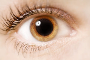 Why You Should Get a Dilated Eye Exam