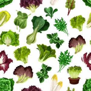 4 Super Leafy Greens for Improved Eyesight